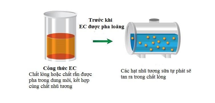 EC (Emulsifiable Concentrate) Công thức nhũ tương đậm đặc